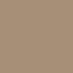 1019 - Beige grigiastro